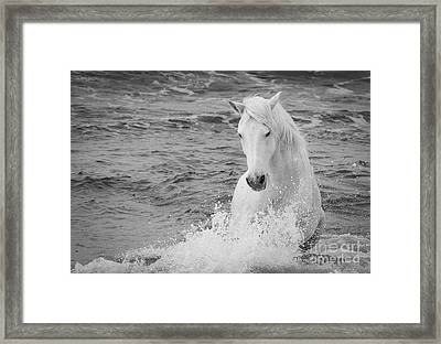 The Curve Of The White Horse Framed Print by Carol Walker