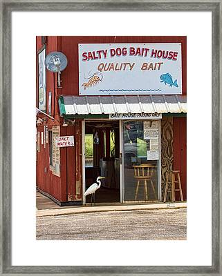 The Customer Framed Print by Sally Mitchell
