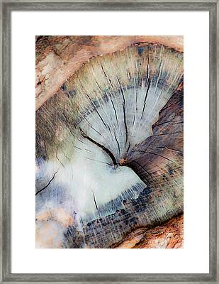 Framed Print featuring the photograph The Cut by Stephen Anderson
