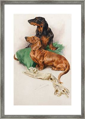 The Dachshunds Framed Print