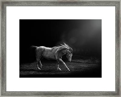 Framed Print featuring the photograph The Dance by Debby Herold