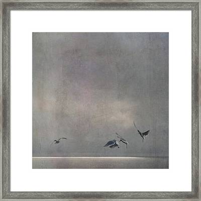 Framed Print featuring the photograph The Dance by Sally Banfill