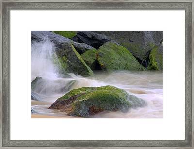 The Dancing Tide Framed Print by Brad Scott