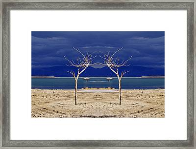 The Dancing Trees 01 Framed Print by Arik Baltinester