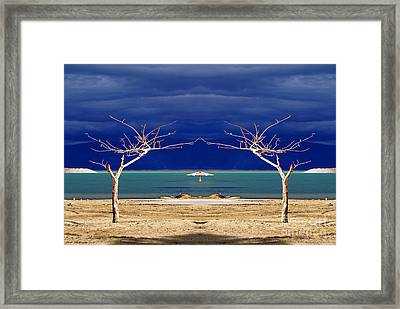 The Dancing Trees  02 Framed Print by Arik Baltinester