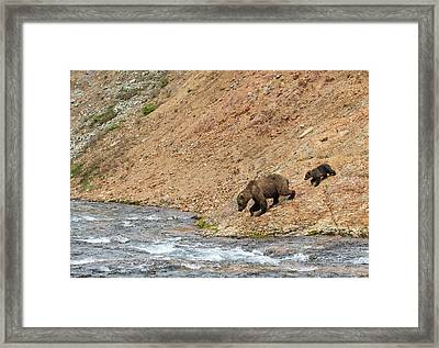 Framed Print featuring the photograph The Danger Has Passed by Cheryl Strahl