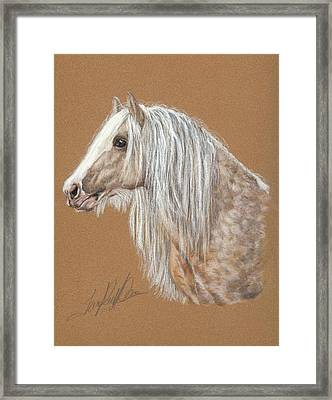 The Dappled Gypsy Romeo Framed Print