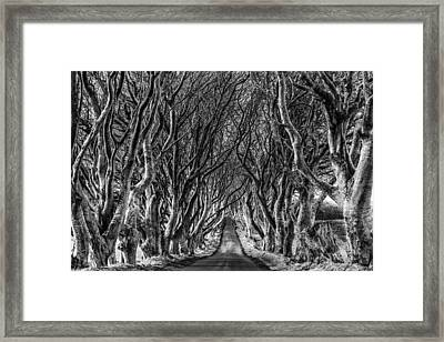 The Dark Hedges Framed Print by Chronography