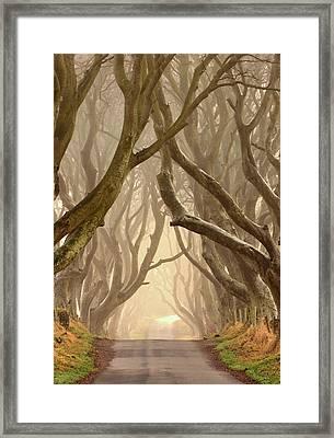 The Dark Hedges Framed Print by Hubert Leszczynski