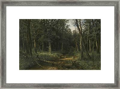 The Dark Wood Framed Print by Ivan Shishkin