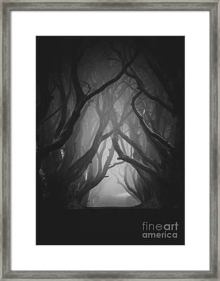 The Darkness Framed Print by Pawel Klarecki