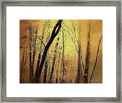 The Dawn Of The Trees Framed Print