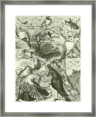 The Death And Burial Of Cock Robin Framed Print by English School
