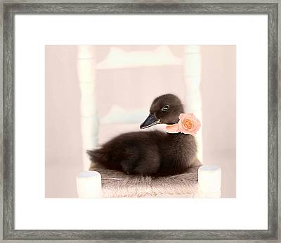 The Debutante Framed Print by Amy Tyler