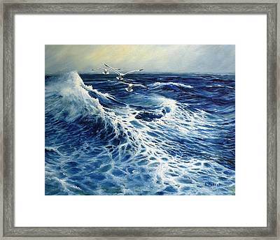 The Deep Blue Sea Framed Print by Eileen Patten Oliver