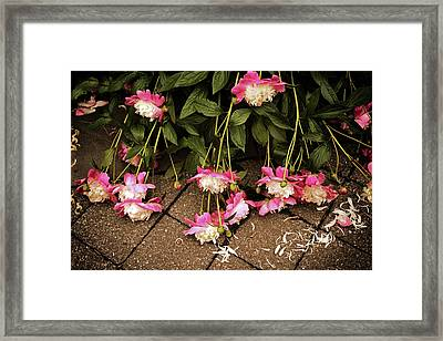 After The Deluge Framed Print by Jessica Jenney