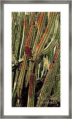 Desert Jungle -1 Framed Print by Linda Parker
