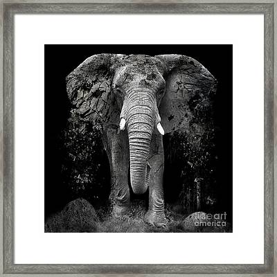 The Disappearance Of The Elephant Framed Print