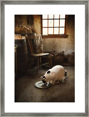 The Dishwasher Framed Print