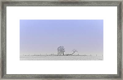 The Distance Between Us Framed Print