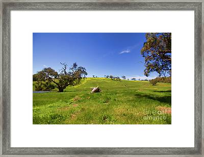 The Distant Hill Framed Print by Douglas Barnard