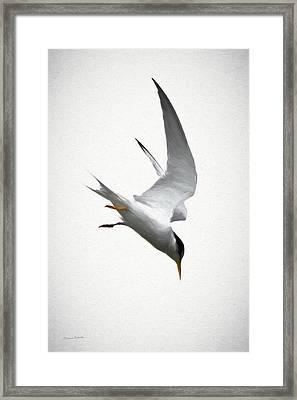 The Dive Framed Print by Ernie Echols