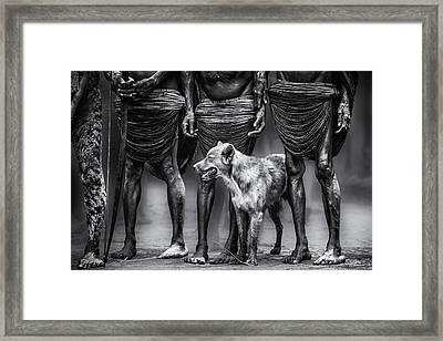 The Dog Framed Print by Pavol Stranak