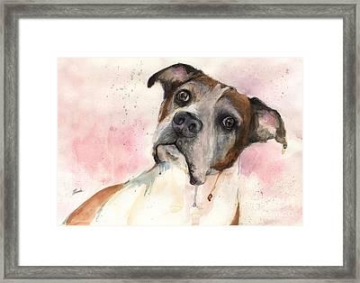 The Dog Portrait Framed Print