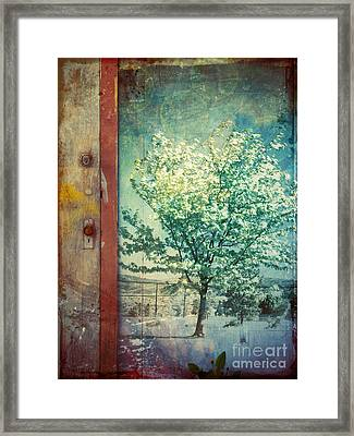 The Door And The Tree Framed Print by Tara Turner