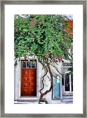 The Door- Mykonos Framed Print