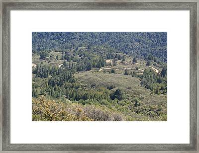 The Double Bow Knot On Mount Tamalpais Framed Print by Ben Upham III