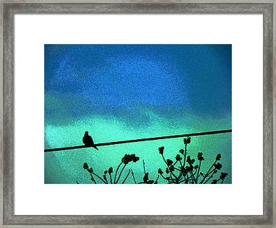 The Dove Above 2 Framed Print