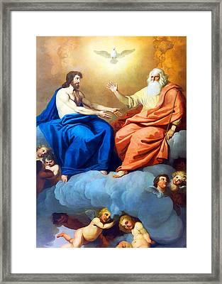 The Dove Framed Print by Munir Alawi