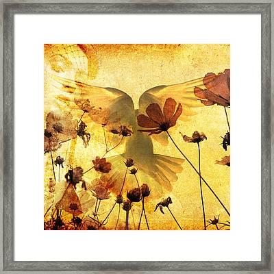 The Dove Framed Print by Tommytechno Sweden