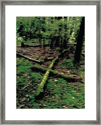 The Downfall Framed Print by Choco Friedrix