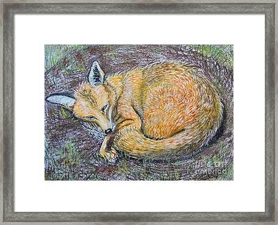 The Fox Framed Print