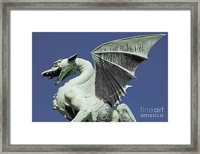 The Dragon Framed Print by Steve Outram