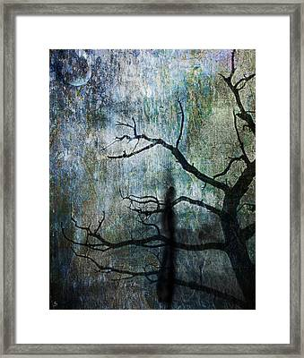 Framed Print featuring the photograph The Dreaming Tree by Ken Walker