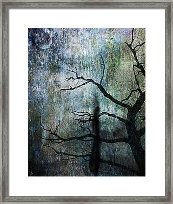 The Dreaming Tree Framed Print by Ken Walker