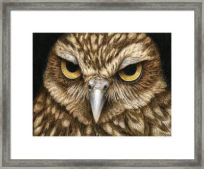 The Dubious Owl Framed Print