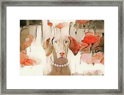 The Duchess Framed Print