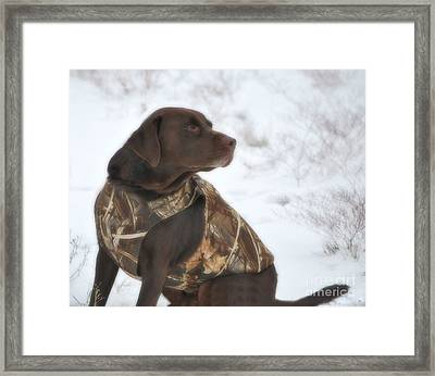 The Duck Dog Iv Framed Print by Donna Greene