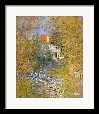 Quack Framed Prints