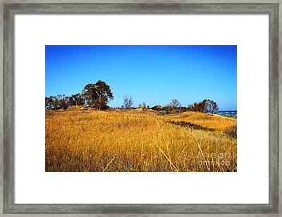 The Dunes - Lake Michigan Framed Print