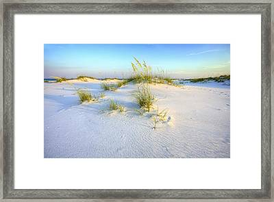 The Dunes Of Shell Island Framed Print