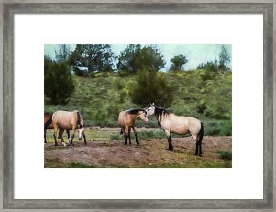 The Duns Framed Print