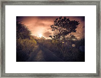 The Dusk Framed Print