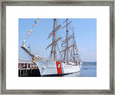 The Eagle Framed Print by Ursula Wright