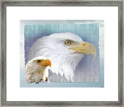 The Eagles Focus Framed Print by Debra     Vatalaro