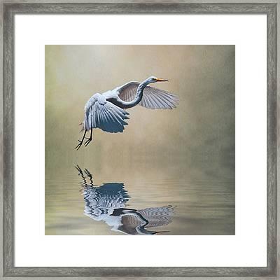 The Early Bird Framed Print